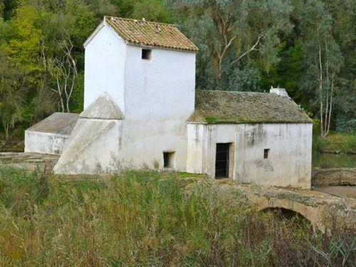 Molino en Alcalá